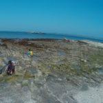 保護中: 海遊び